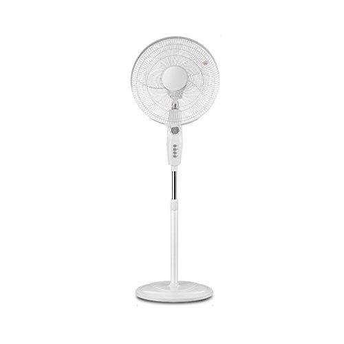 Fan ventilateur de plancher Shaking His Head Ventilateur Fan Five Leaf