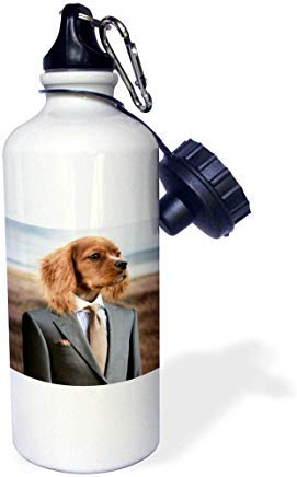 GFGKKGJFD612 Sandy Mertens Dog Designs – English Cocker Spaniel Dog Wearing Suit and Tie, drsmm White Aluminum Sports Water Bottle Novelty Gifts