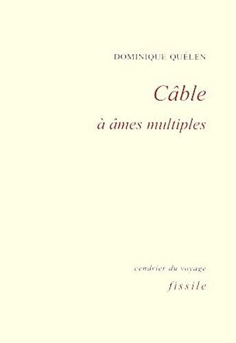 Câble à âmes multiples