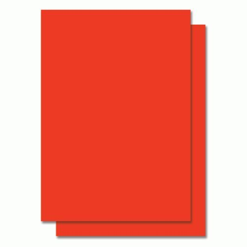TOTAL HOME A4 Size Self Adhesive/Sticker Labels Sheets  Paper, Fluorescent Red  20 Pieces