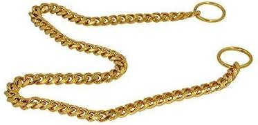Petlicious & More Pure Brass Dog Choke Chain Training Collar Training Choke Chain Show Collar Chain - 16 Inch Collar