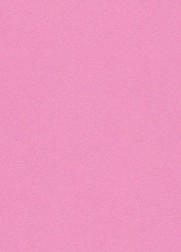 250 fogli DIN A5 rosa canina colorato 160g/m² Ufficio di carta. Alta qualità colorata carta pizzo per copia Inkjet Laser. Prima classe per Flyers Newsletter poster fax in arrivo avvisi importanti sistemi di memo ordine di avvertimento