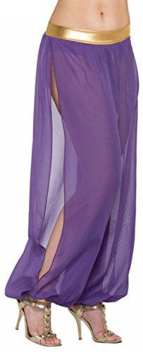 Bristol Novelty Forum Novelties 76446Standard Größe Desert Prinzessin Harem Pants Kostüm passen Frauen mit A 26bis 32Taille