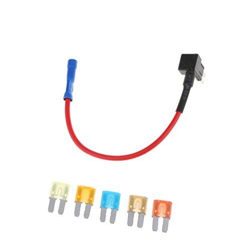 Baoblaze Micro 2 Sicherung TAP Halter Audio Video Montage Kit 5PCS 5A 7.5A 10A 15A 20A SICHERUNG -
