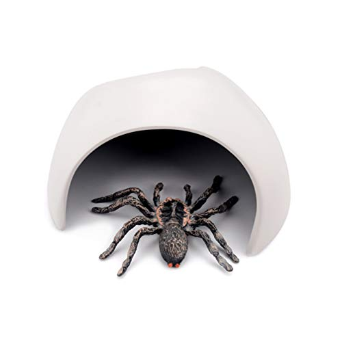 Gecko Kostüm Kleine - POPETPOP Kunststoff Reptilien versteckt Höhle kleines Haustier verstecken Lebensraum Reptilienschutz Haus für Schildkröte Spinne Skorpion Eidechse Gecko-weiß