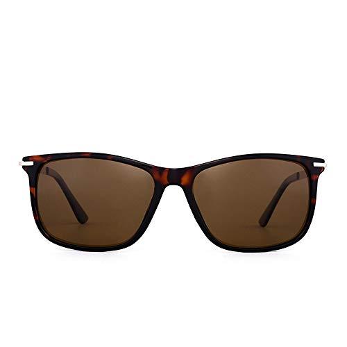 Honneury Klassische runde Mode polarisierte Sonnenbrille, Sonnenbrille mit Farbverlauf für Frauen (Farbe : C2-Brown/Tortoise)