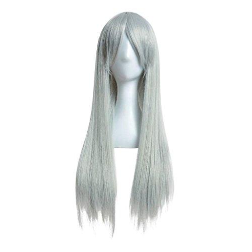 m lange gerade Perücke für Cosplay Party (Grau) (Barbie-frau Kostüm)