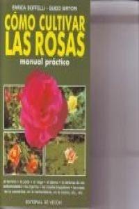 Como cultivar las Rosas