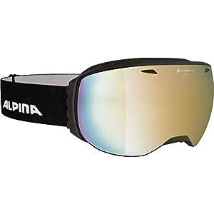 ALPINA Erwachsene Big Horn QVMM Skibrille