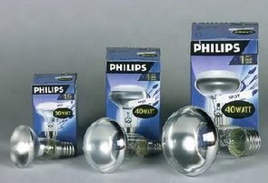 Philips Reflektorlampe NR50 40 Watt E14 30 Grad von Philips bei Lampenhans.de