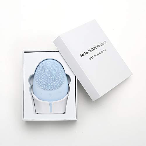 CSFM-Face Brosse nettoyante Visage électrique Masseur Dispositif de Soin de la Peau Anti-âge avec Silicone Souple pour Chaque Type de Peau, Rechargeable par USB