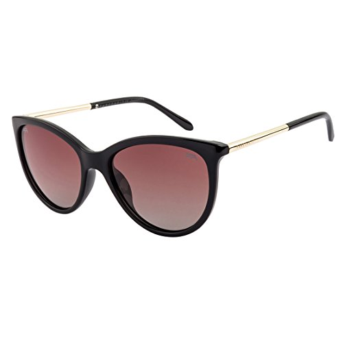 Farenheit Cat's Eye Sunglasses|FA-2401P-C2|
