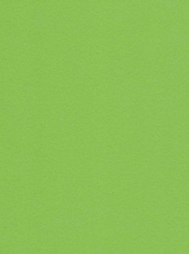 125-feuilles-a4-160g-vert-menthe-papier-de-bureau-de-couleur-top-copie-papier-de-couleur-de-qualite-