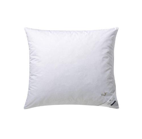 Billerbeck 5453900008 e04 - cuscino classico, modello goldedition kissen, dimensioni 60 x 40 cm