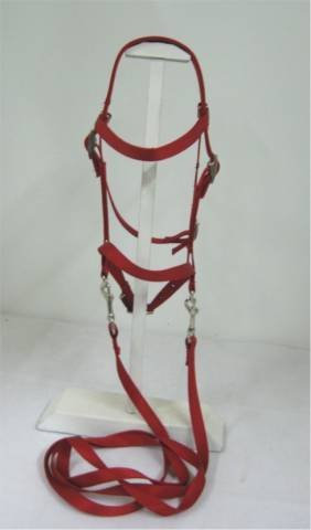 Miniature Horse / Sm Pony Bitless Bridle by Party Ponies