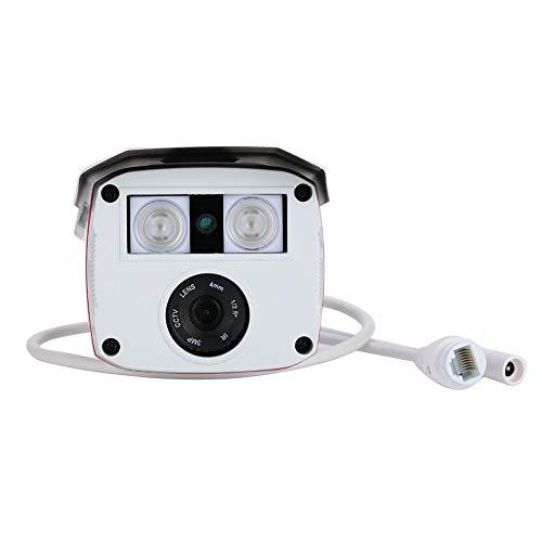 IP-Kamera-Sicherheitskamera mit erstklassigem wasserdichtem HD dauerhaftem Nachtsicht 3.6mm Objektiv-Entdeckungs-Monitor_N System