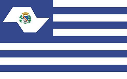 magFlags Flagge: Large Araçatuba | Araçatuba, São Paulo, Brazil | Querformat Fahne | 1.35m² | 90x150cm » Fahne 100% Made in Germany