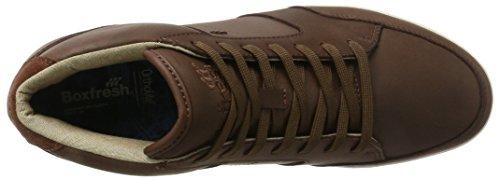 Boxfresh Cheam, Sneaker a Collo Alto Uomo Marrone (Braun)