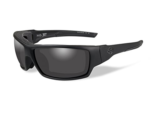 Harley-Davidson Wiley X Jet Smoke Grey Motorrad Brille