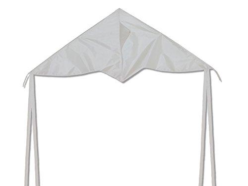 dans-la-brise-colorfly-delta-kite-blanc