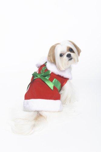 Fashion Pet Mrs. Claus Kostüm für Hunde, Größe S