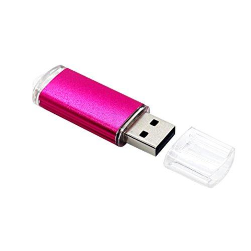 Spy Key Chain (256M Usb 2.0 Flash-Laufwerk, QinMM Tragbare Metall Flash Speicher Stick Speicher Daumen U Scheibe (Heißen Rosa))