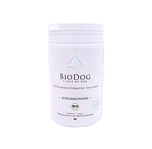 BIODOG Jungbrunnen Ergänzungsfutter für Hunde Bio mit Vitalpilzen, Kräutern, Algen, Mineralien und Enzymen für jeden Tag als Biodog Futter Zusatz und Barf Zusatz Einfaches Füttern
