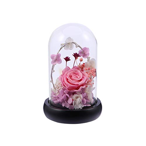 Rosa Rose Dome (Uonlytech LED Lichterkette und Rose in Glaskuppel mit der hölzernen Basis (Rosa))