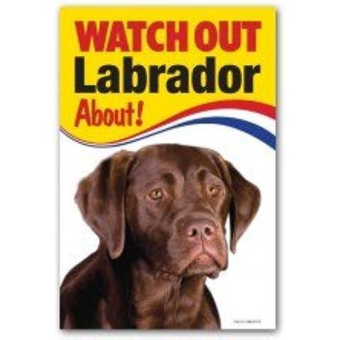 Cioccolato cane Labrador regalo–Attenzione–segnale di avvertimento 22,9x 15,2cm