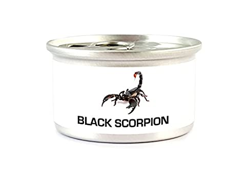Asian Forest Scorpion - 30 grams
