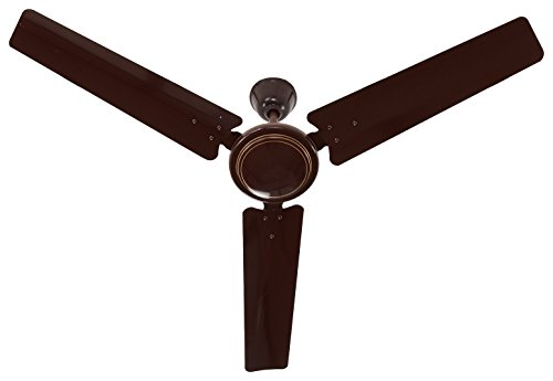 NexStar 55-Watt Ceiling Fan (Brown 1200mm Sweep) 48 inch  available at amazon for Rs.999