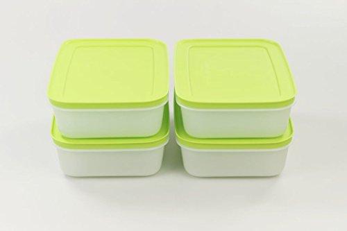 Tupperware 30837 - Contenitore per congelatore, piatto, 1,0 l, colore: Verde/Bianco