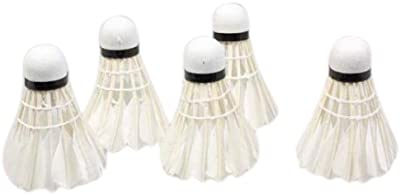 REGAIL 5Pcs Formacion Blanca Regenerativa Jefe Pato Pluma Volantes Badminton