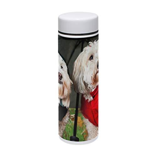 Bennigiry Hunde-Trinkflasche aus Edelstahl, vakuumisoliert, doppelwandig, hält Ihr Getränk warm und kalt, 220 ml