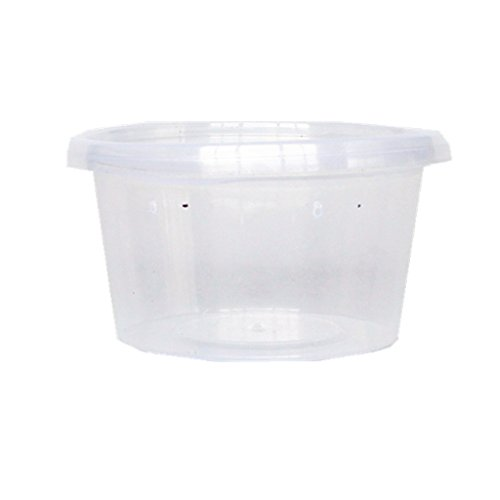 10pcs-lot-boite-plastique-leger-reservoir-avec-couvercle-pour-transport-elevage-eclore-de-reptile-h-