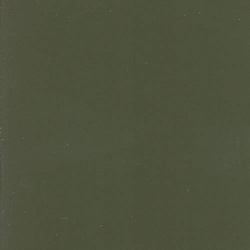 Wandfarbe Olivgrün- (RAL6003)- 2,5L