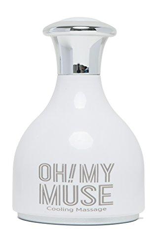 Alu-elektro-platte ([Oh. My Muse] Facial Kühlung Massagegerät, koreanisch Kühlstab Massage)
