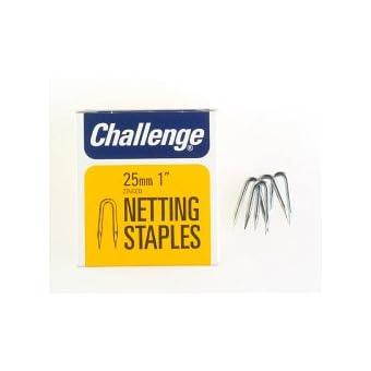 Challenge agrafes plaqué Zinc (boîte 25 mm