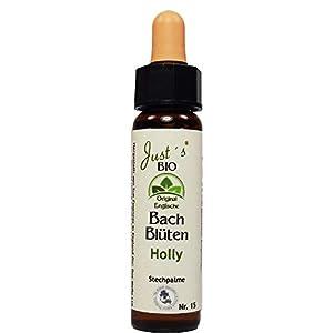 Holly Nr. 15 Just´s Original englische BIO Bachblüten Stechpalme Blütentherapie für Mensch und Tier