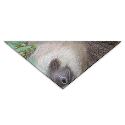 Baby Sloth Kostüm - Wfispiy Baby Sloth Sleeping Dog Bandanas Scarves Triangle Bibs Scarfs Unique Basic Neckerchief Cat Collars