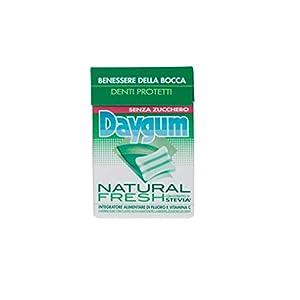Daygum Natural Fresh mit Stevia ohne Zucchero Federmäppchen 20 Stück