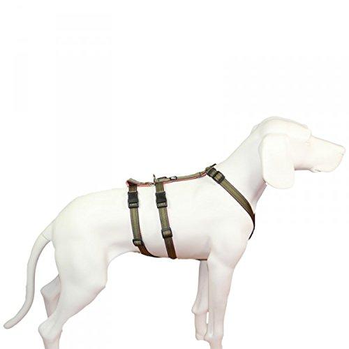 No Exit ausbruchsicheres Hundegeschirr für Angsthund, Sicherheitsgeschirr für Pflegehund,...