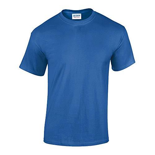 Midnight Dome (Gildan - Heavy Cotton T-Shirt '5000' / Royal, L)