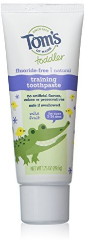 toms-of-maine-toddlers-flouride-free-natural-toothpaste-in-mild-fruit-gel-175-ounce-by-toms-of-maine