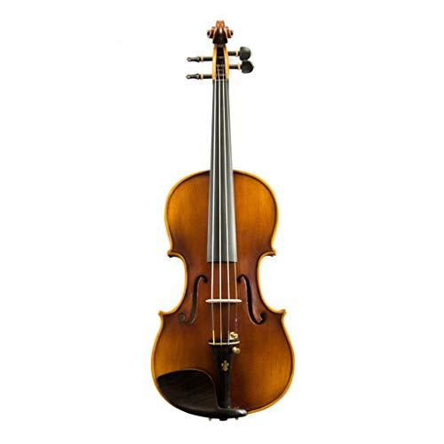 Violini Strumenti a Corda Abete in Acero Fiddles Prestazioni di classificazione Strumento a Corde Europeo Fatto a Mano Parti di Ebano Accessori Completi (Color : 4/4)