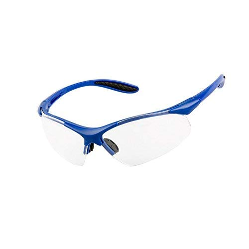 PRO FIT Viper Schutzbrille, klare Polycarbonatscheiben