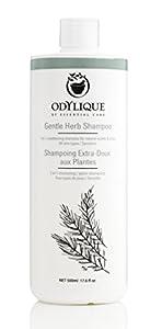 Organic Shampoo - Odylique Gentle Herb Shampoo (16.9 Fl Oz)