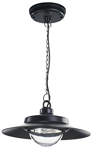 Control-finish (Nature Power 21030 Hanging Solar Powered LED Shed Light with Remote Control, Black Finish by Nature Power)