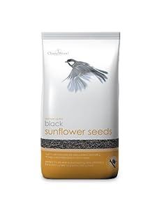 Chapelwood Black Sunflower Seed 3.5kg