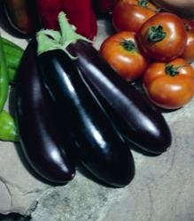 Légumes - Kings Seeds - Flux des paquets - Aubergine - Long Violet